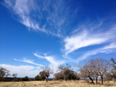 Clouds at the Ranch